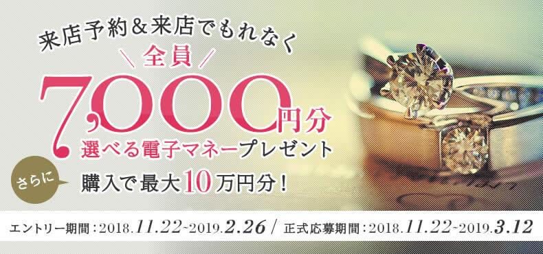 マイナビウエディング_平成最後の指輪探し応援キャンペーン
